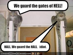 funny-pictures-cats-guard-the-hall-entrance